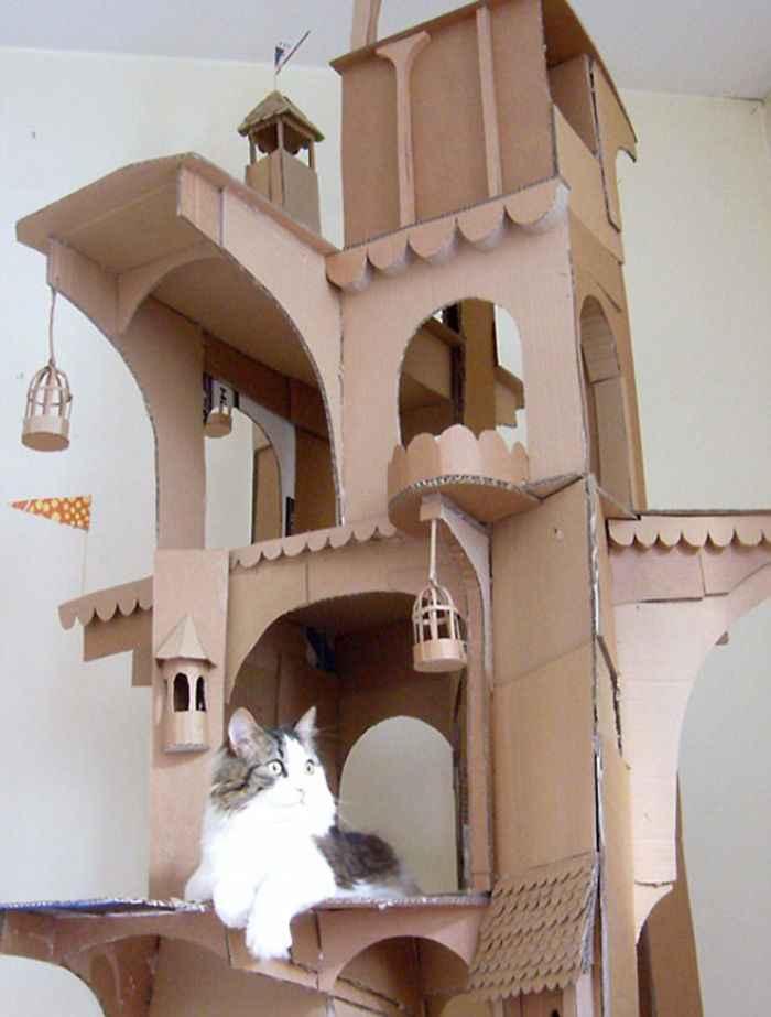 como fazer brinquedos para gatinhos