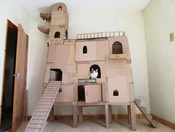 como fazer brinquedos para gatos