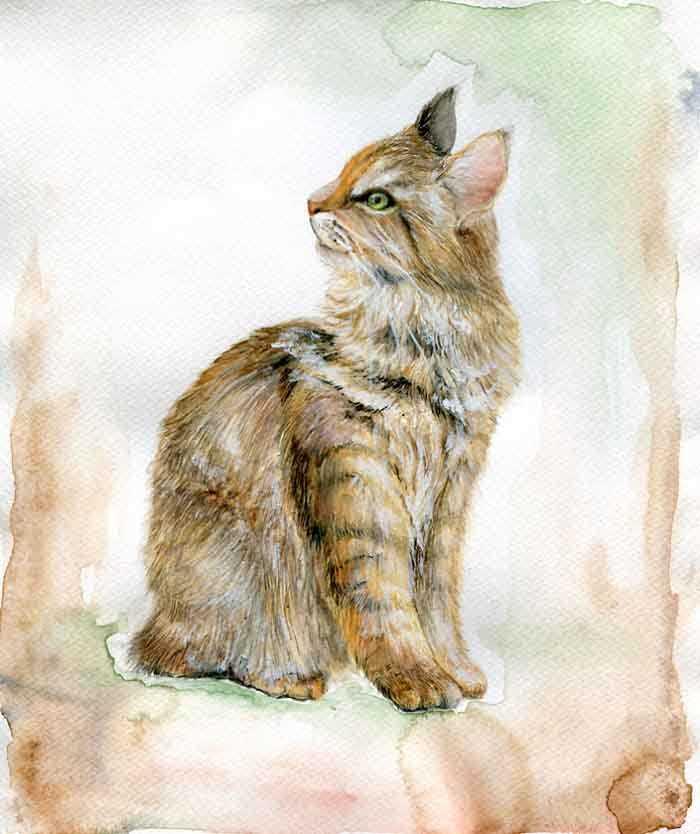 Artista reproduz gatinhos estilos diferentes
