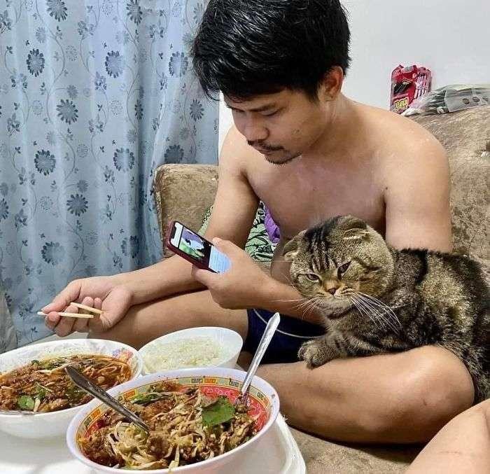 Mulher registra o gatinho roubar marido