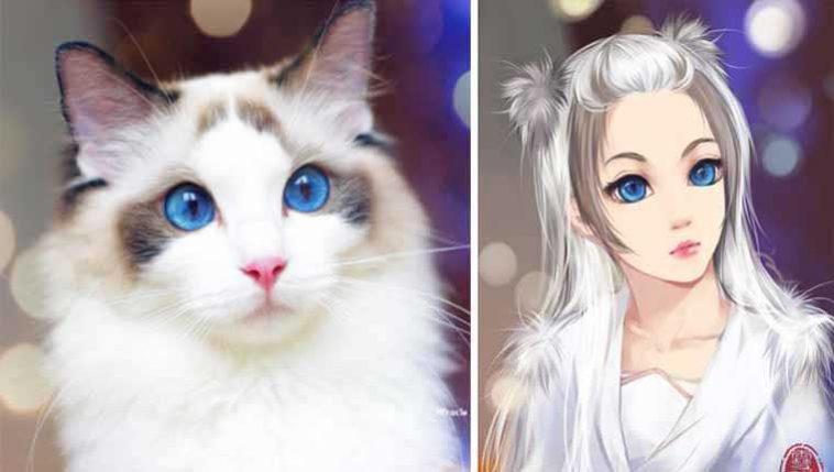 Versões humanas de gatinhos