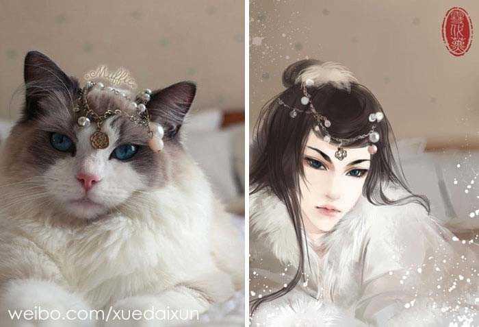 Versões humanas de gatinhos China