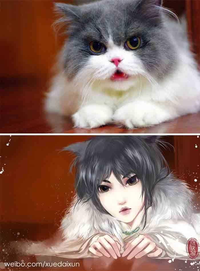 Versões humanas de gatinhos imagens