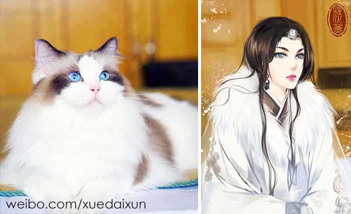 Versões humanas de gatinhos perfeitos