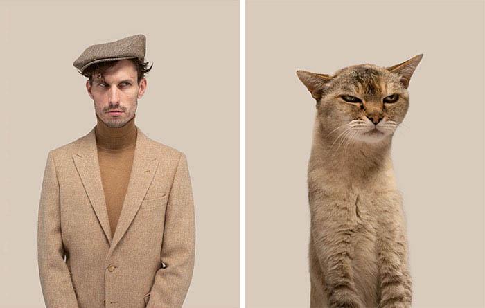 Gatinhos e humanos idênticos fotos