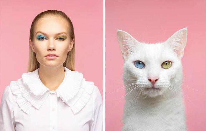Gatinhos e humanos idênticos imagens