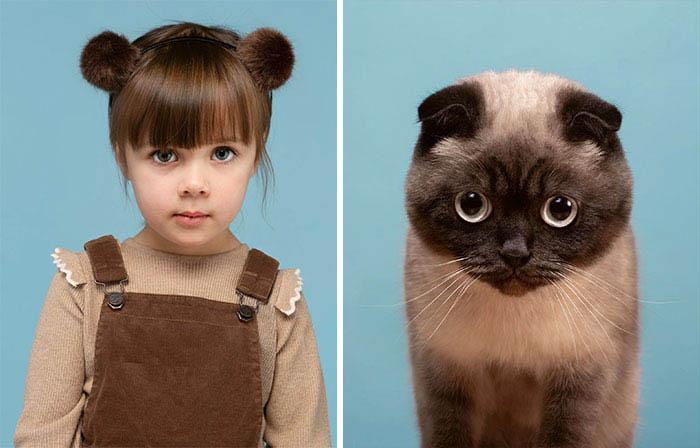 Gatinhos e humanos idênticos sessão de fotos
