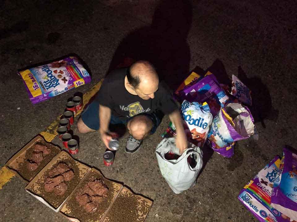 Homem que alimenta gatinhos abandonados