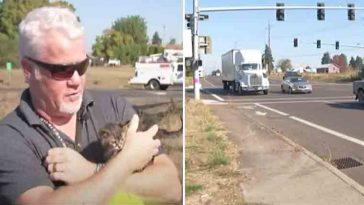 Homem salva gatinha