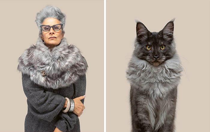 fotos de gatos e pessoas