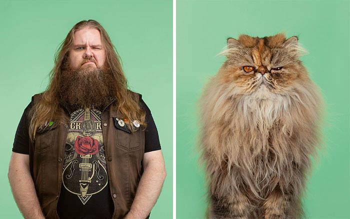 gatos e pessoas fotos