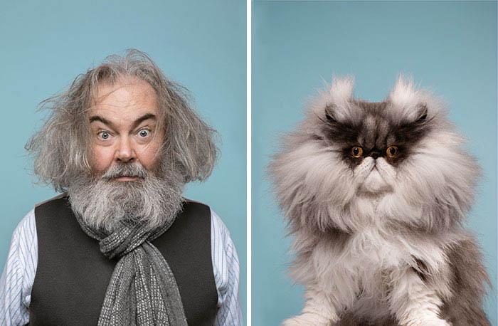 Gatinhos e humanos idênticos fotos engraçadas