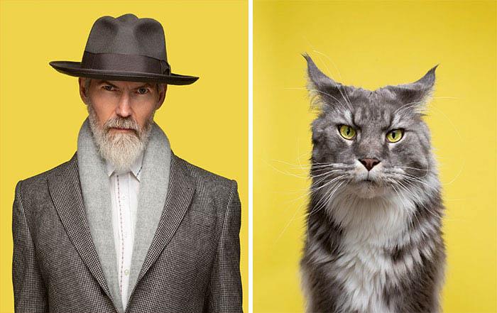 humanos e gatos fotos