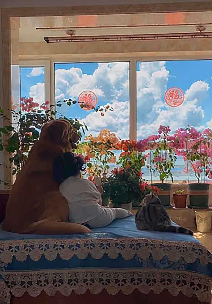 menina cachorro e gato