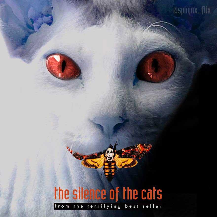 o-silencio-dos-gatos