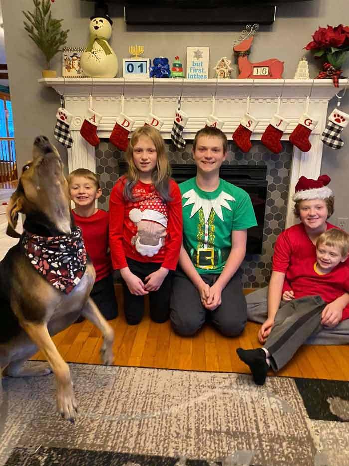 Cachorro-estraga-todas-as-fotos-de-Natal-família
