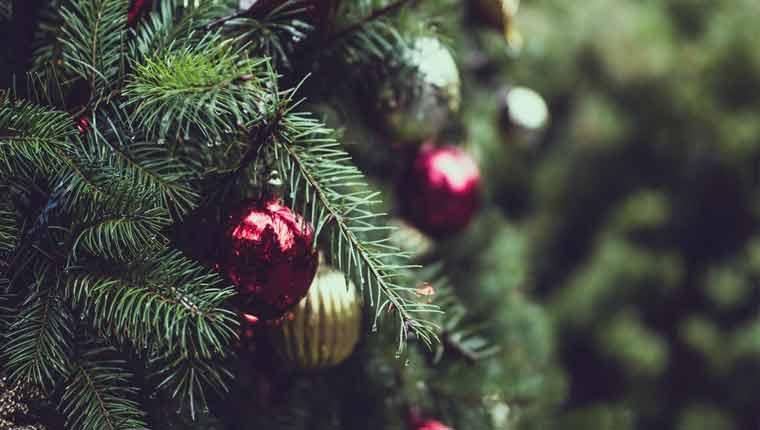 Curiosidades-sobre-o-Natal-fotos