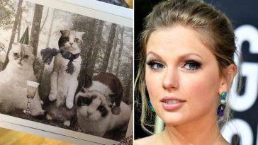 Taylor Swift envia cartões de Natal com seus gatinhos