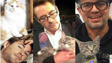 Vingadores amam gatinhos e cachorros e vídeo mostra os animais deles