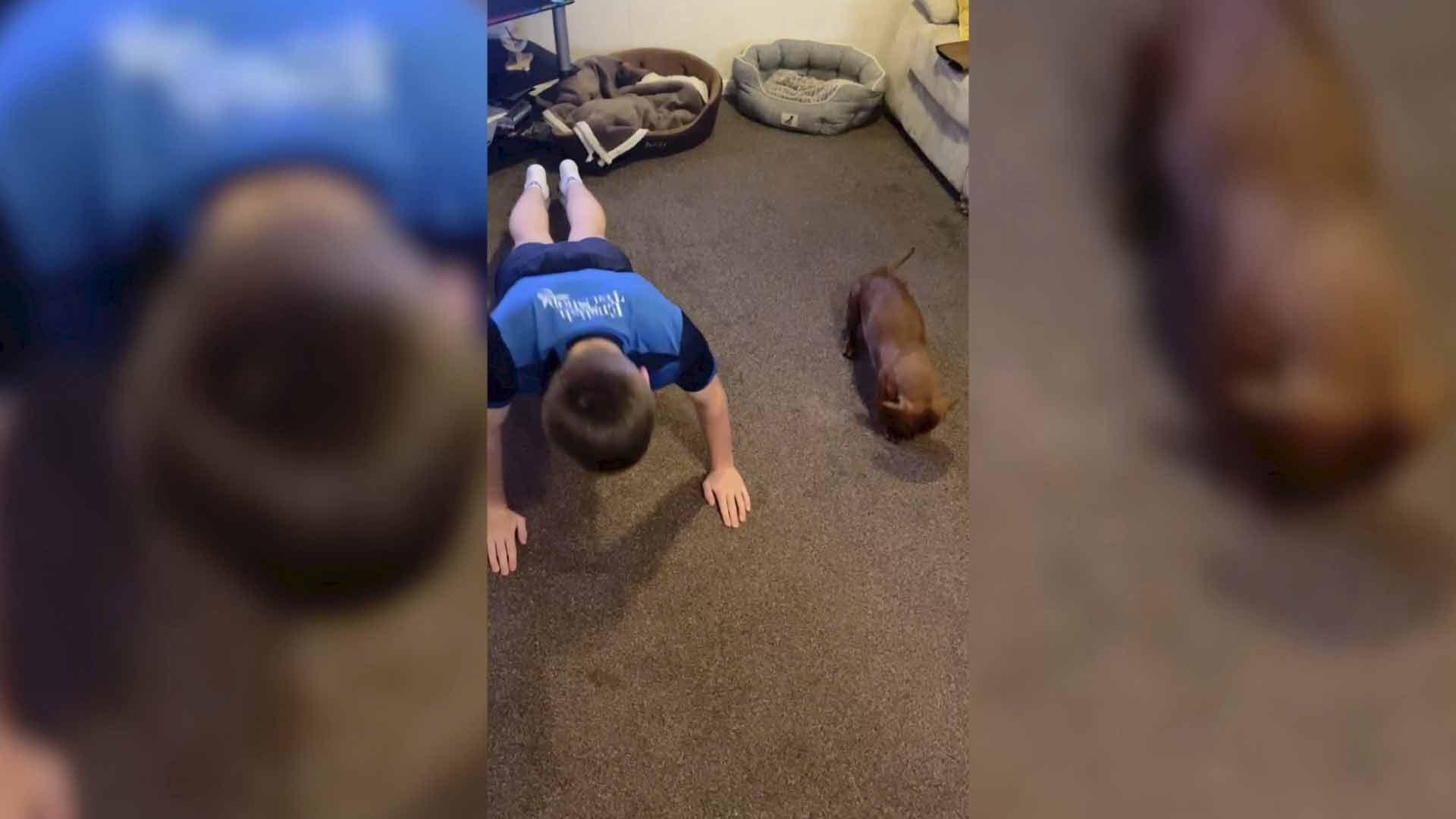 Cachorro-salsicha-adora-fazer-flexões-com-dono