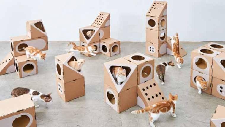 Cidade-de-papelão-gatinhos-montar