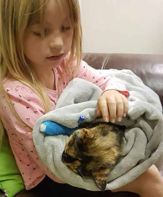 Mãe-registra-a-filha-se-despedindo-gatinha