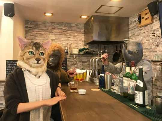 Máscaras-para-donos-com-rosto-dos-seus-gatinhos