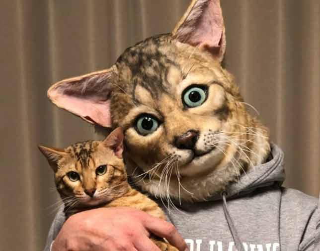 Máscaras-para-donos-gatinhos