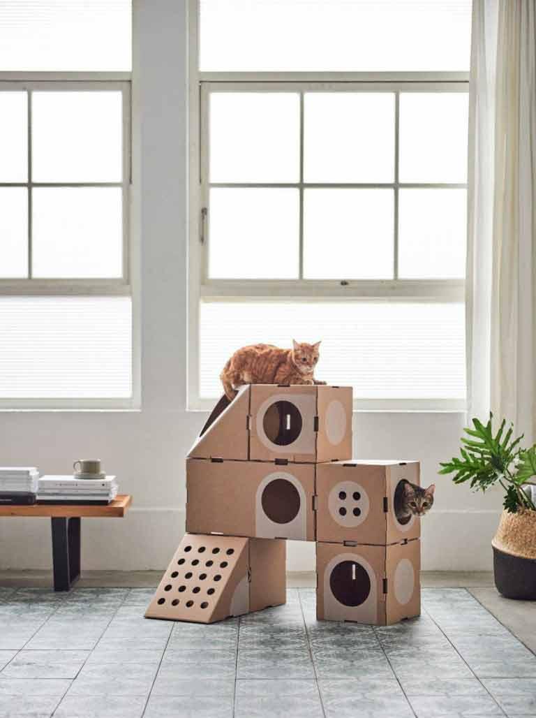 brinquedos-de-gatos
