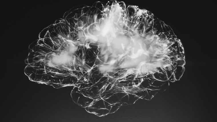 curiosidades-sobre-o-cérebro-fatos