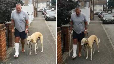 Cachorro finge estar mancando em solidariedade a dono com gesso no pé