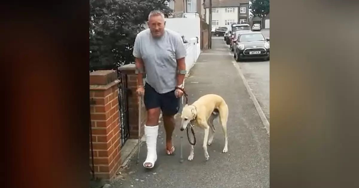 Cachorro finge estar mancando amigo