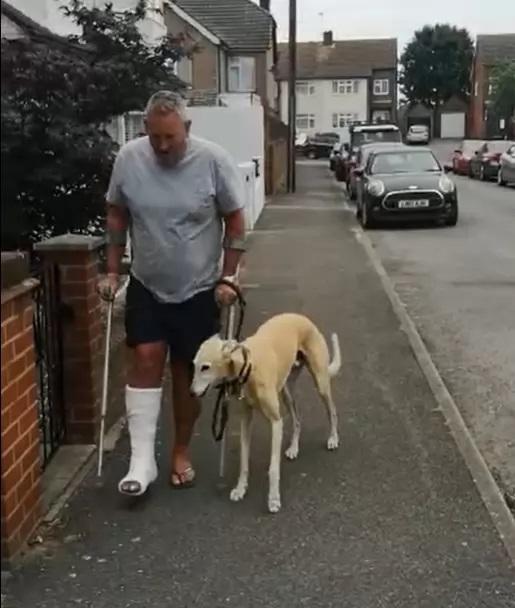 Cachorro finge estar mancando por dono