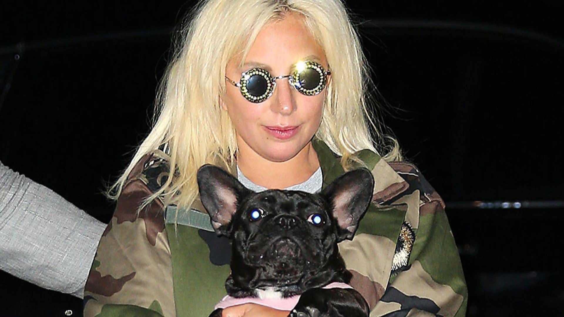 Cachorros roubados de Lady Gaga