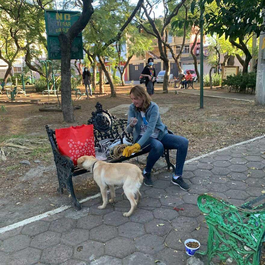 Criança deixa cachorro em banco resgate