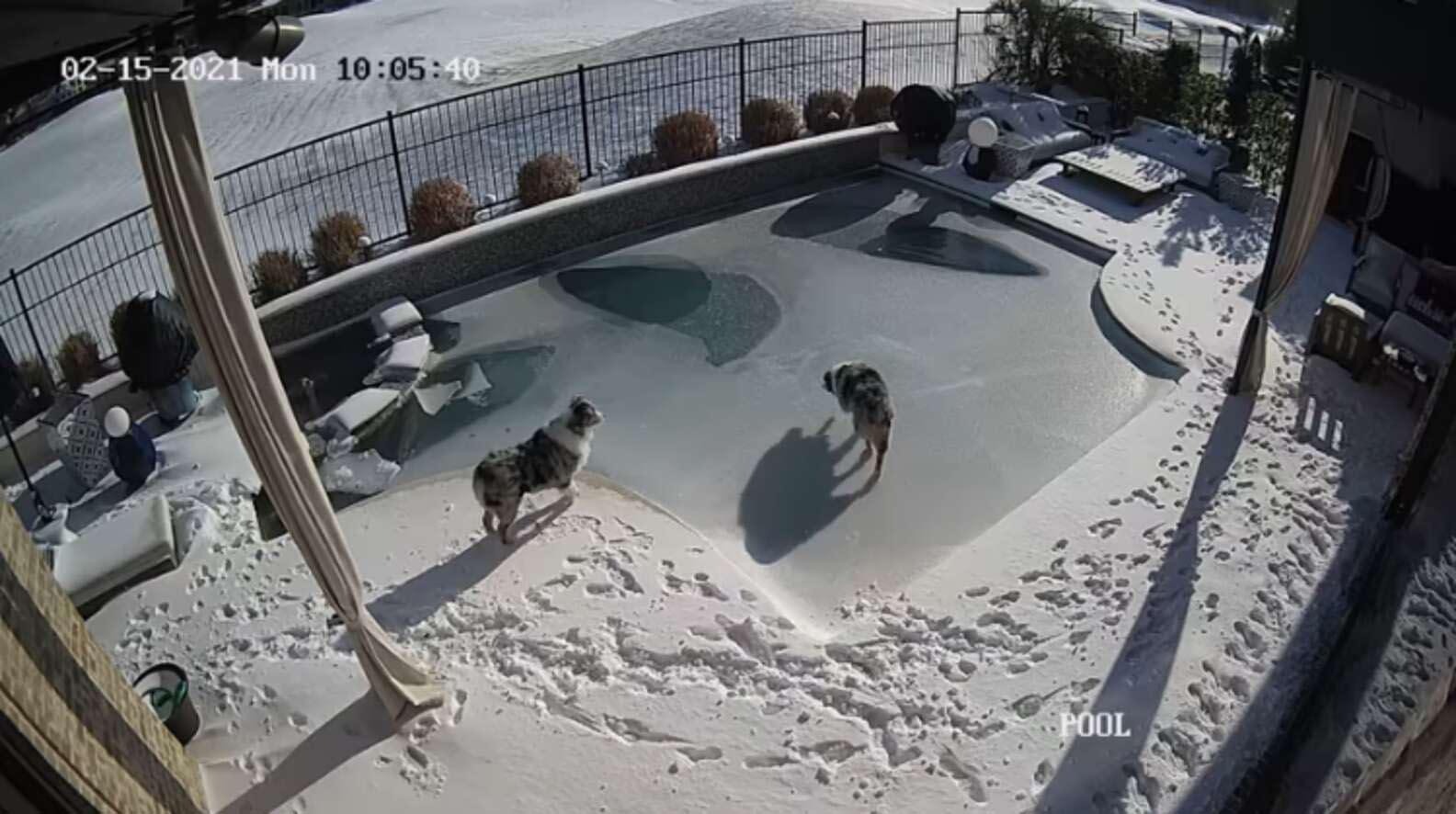 Homem se arrisca em piscina