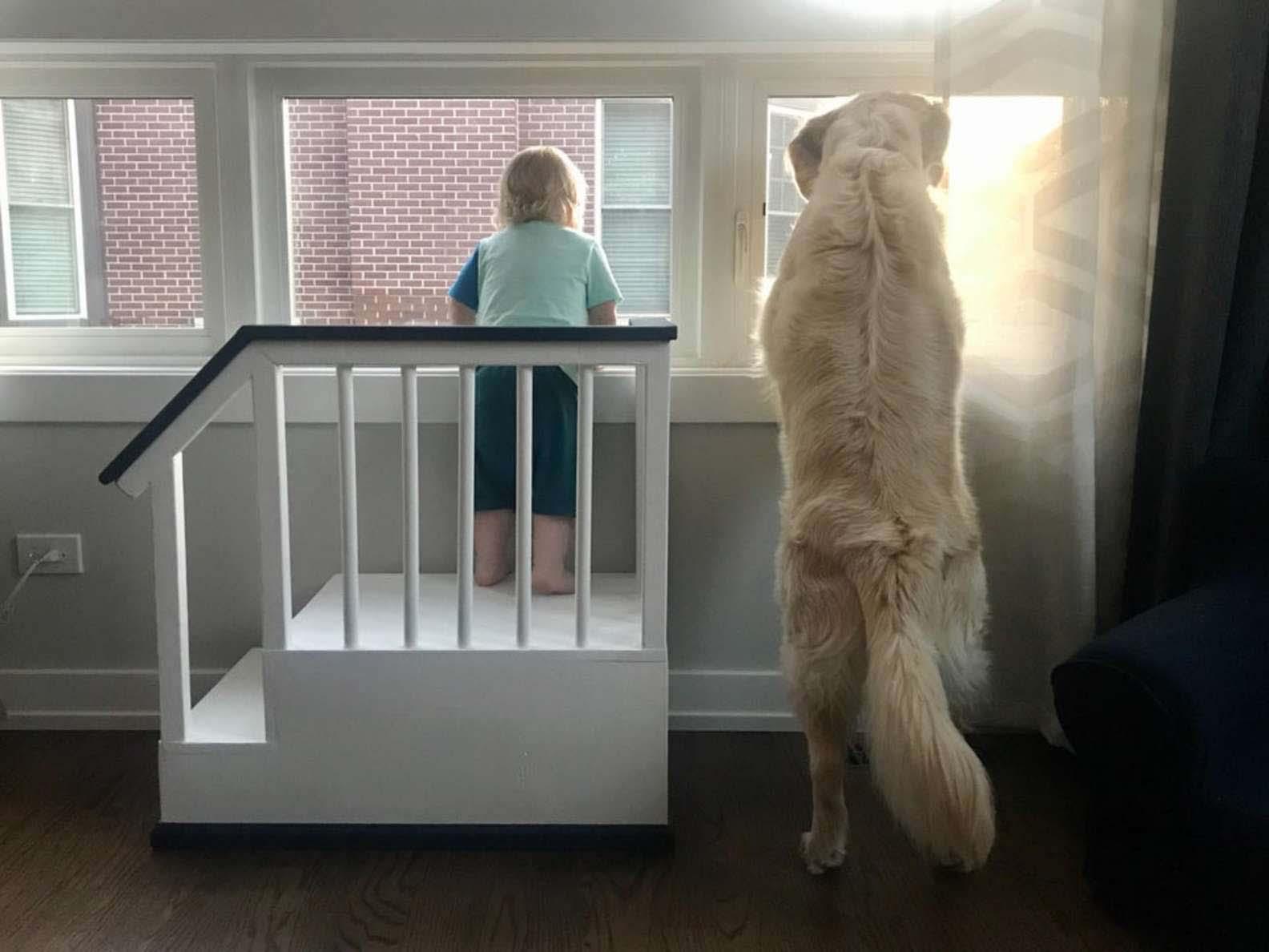 Pai constrói escadinha para filho