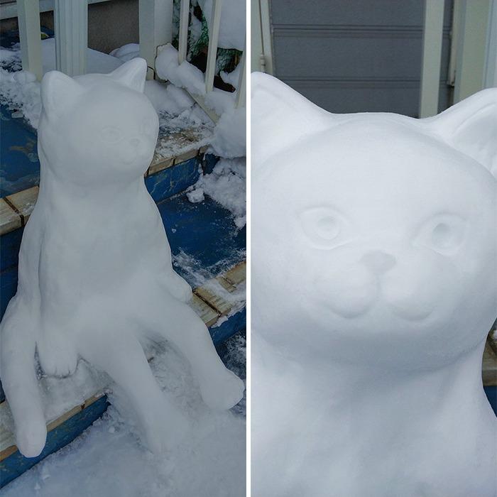 gato de neve