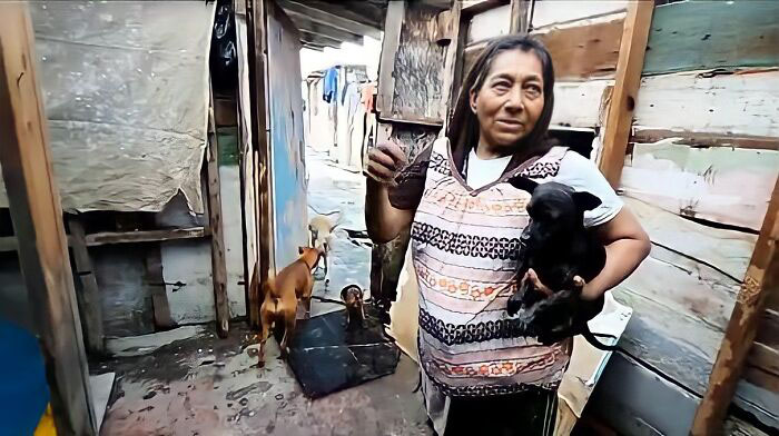 moradora de rua encontra abrigo