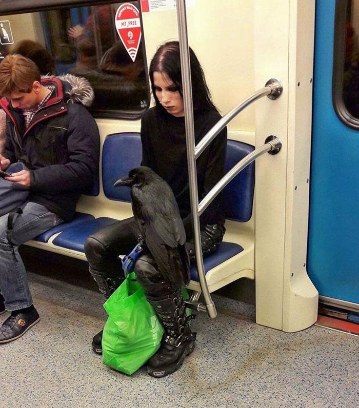 mulher com corvo
