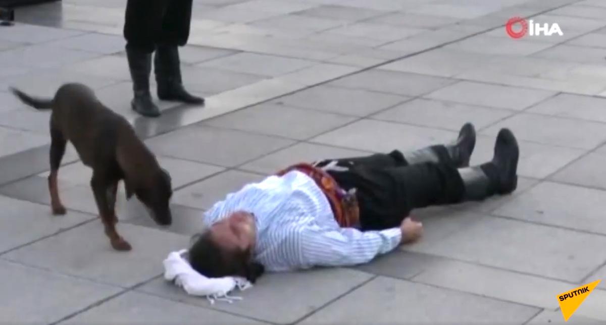 Ator se deita no chão cachorro de rua