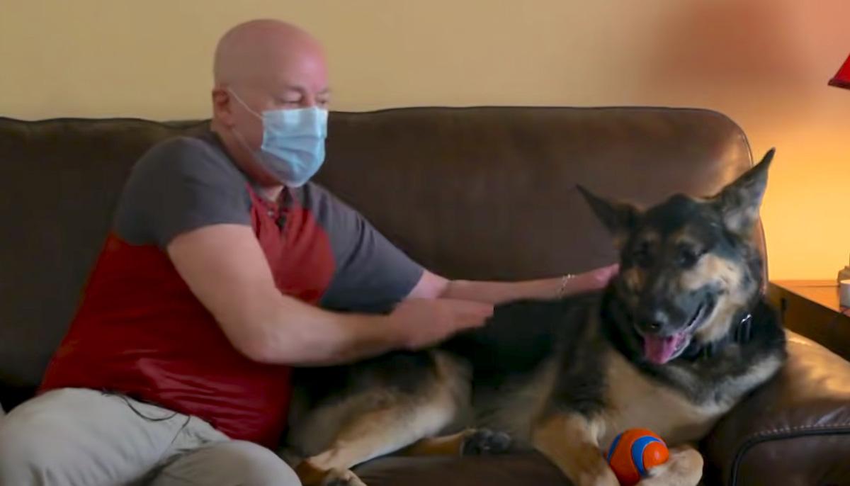 Cadela rejeitada salvou a vida do homem