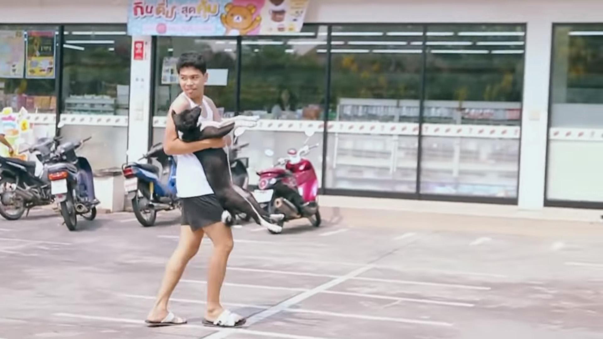 Jovem dá banho em cachorros de rua