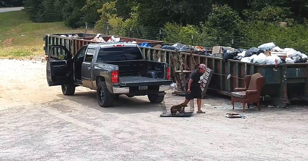 Mulher arrasta cachorro em uma jaula