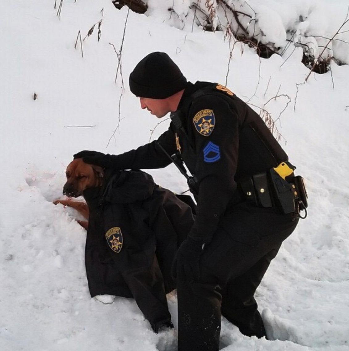 Policial abre mão do casaco cachorro
