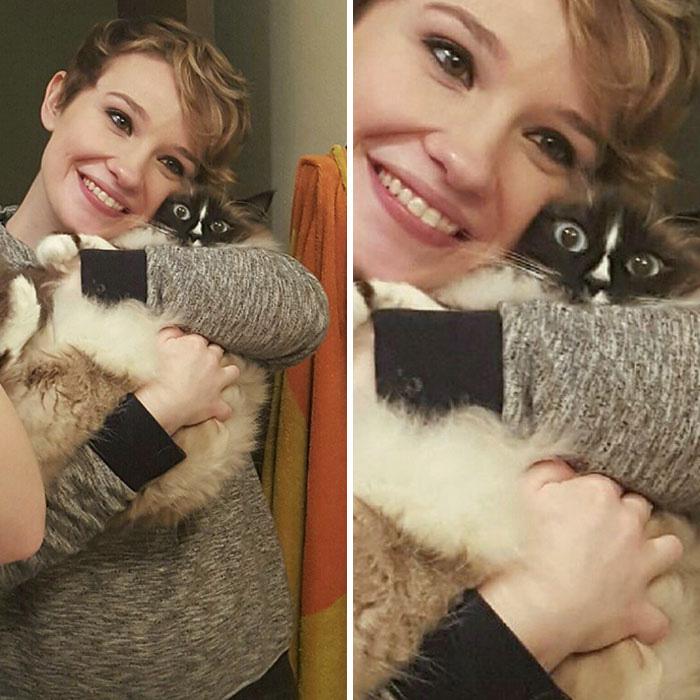gatinhos abraçar