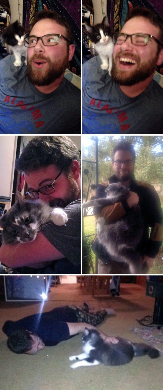 pessoas que não querem saber de gatinhos