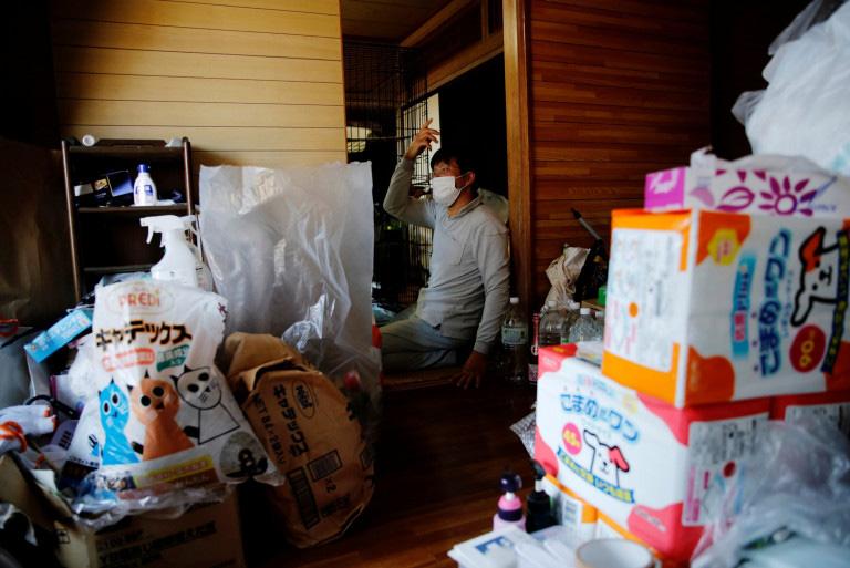 salva gatos em Fukushima