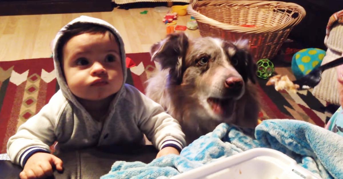 Mulher pede que o bebê e cachorro